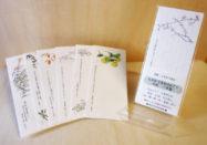 野の花画家・阿見みどり | 株式会社 銀の鈴社 - 商業出版、個人出版、野の花アート®︎万葉野の花®